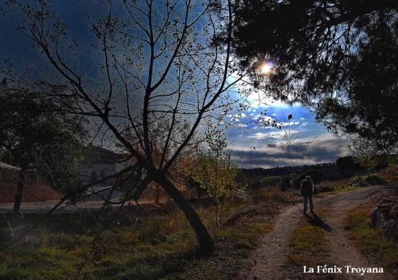 04 DESPERTAR EN AHILLAS fotofenix 2011